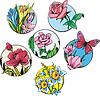 Round Blume Designs