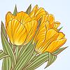 ID 3810001 | Floral Hintergrund mit Blüten von Tulpen | Stock Vektorgrafik | CLIPARTO