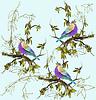 Nahtlose Hintergrund. Vögel | Stock Illustration
