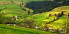 Rural landscape in Carpathian mountains | 免版税照片