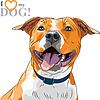 ID 3784598 | 웃는 강아지 미국 Staffordshire 테리어 스케치 | 벡터 클립 아트 | CLIPARTO