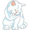 niedliche weiße Katze wäscht, leckt seine Pfote