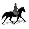 Silhouette von Pferd und Jockey