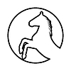 Aufbäumen Pferd Silhouette