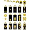 Insignien der iranischen Armee