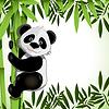 fröhliche panda auf Bambus