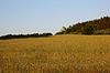 ID 3820807 | Landschaft | Foto mit hoher Auflösung | CLIPARTO