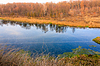 Осенние деревья отражаются в реке | Фото