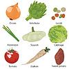 Set Gemüse isoliert