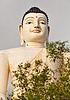 斯里兰卡的标志性建筑 - 大佛像在本托塔 | 免版税照片