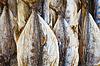 ID 3892167 | Getrocknete Thunfisch auf dem Markt in Sri Lanka | Foto mit hoher Auflösung | CLIPARTO