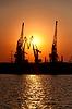 Cranes bei Sonnenuntergang | Stock Foto