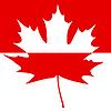 Die Hälfte gemalt Maple Leaf Silhouette | Stock Vektrografik