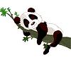 Panda durmiendo en la rama | Ilustración vectorial