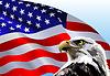 Weißkopfseeadler-amerikanische Flagge