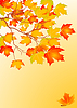 Hintergrund aus Herbstblättern