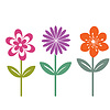Three isolated vector flowers | 向量插图