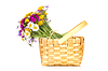 Wiklinowy kosz z bukietem polnych kwiatów | Stock Foto
