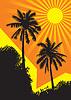 Sunlit Palmen