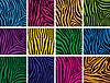 Reihe von bunten Haut Texturen von zebra