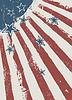 明星划伤美国国旗纹理 | 向量插图