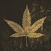 Cannabis Blatt Grunge-Symbol. Mit textur