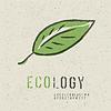 生态概念的集合。包括绿叶 | 向量插图