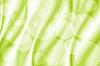 Abstrakte Kurve mit Bokeh grünen Hintergrund | Stock Illustration