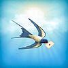 Sky Vogel Briefpost