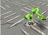 ID 3816799 | Roślina rośnie przez metal | Klipart wektorowy | KLIPARTO