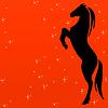 Силуэт лошади на красном фоне | Иллюстрация