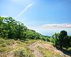 Ścieżka do morza przez las | Stock Foto