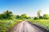 Kurvenreiche Straße in Feld | Stock Foto
