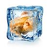 Gebratenes Huhn in Eiswürfel | Stock Foto