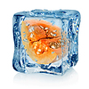 Pumpkin in ice cube | Stock Foto