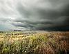 Gewitterwolken über Feld | Stock Foto