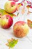 Jesień upraw jabłek | Stock Foto