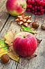 Apfel Herbst | Stock Foto