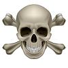 Realistische Schädel und Knochen