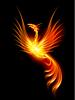 Brennende Phoenix