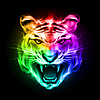 Head of tiger in colorful fire