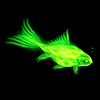 Green fire fish