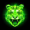 Green fire tiger