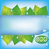 Eco blauem Hintergrund mit frischen grünen Blättern
