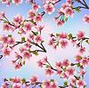 Hintergrund nahtlose Muster mit Sakura-Baum