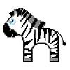 Zebra isoliert auf weißem Hintergrund