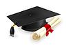 ID 3775584 | Kasztana i dyplom | Klipart wektorowy | KLIPARTO