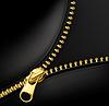 Zipper Gold