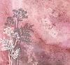 ID 3788968 | Grasses and butterflies on an ancient dim background | Stockowa ilustracja wysokiej rozdzielczości | KLIPARTO