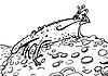 Prinzessin Frosch farblos